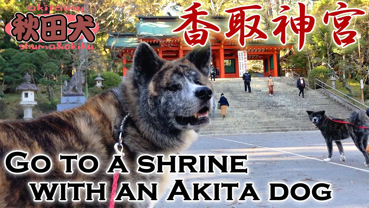 香取神宮へお参りのつもりが・・・