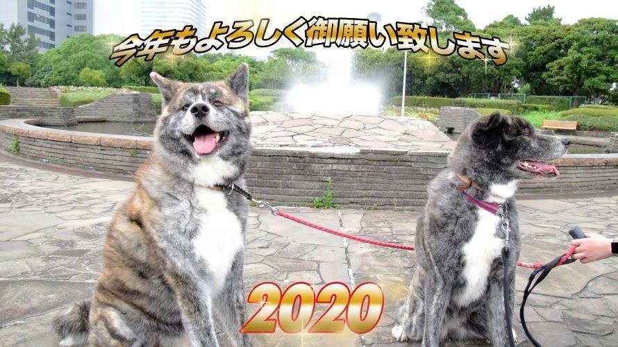 2020年も秋馬とお菊と